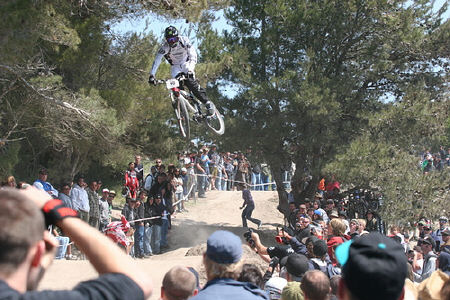 seaotter2008